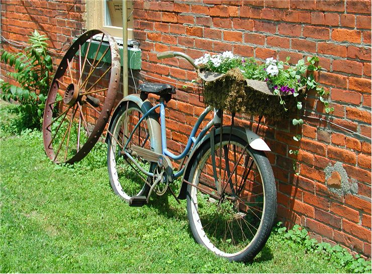 Picture Of Bicycle For Flowers