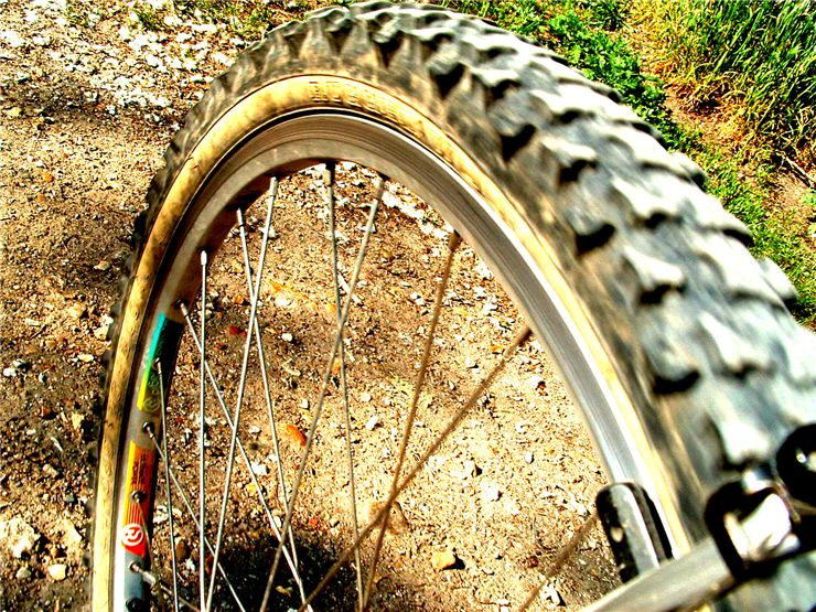 Picture Of Bicycle Wheel
