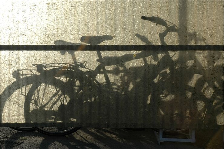 Picture Of Bicycles Shadows