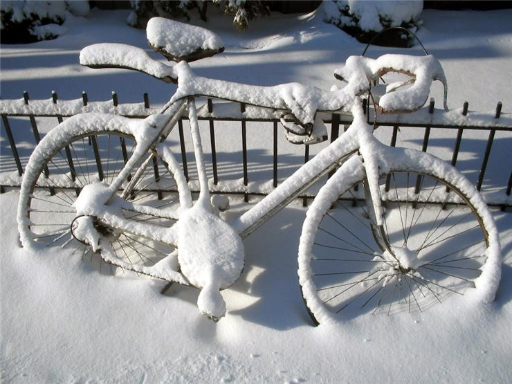 Picture Of Frozen Bicycle
