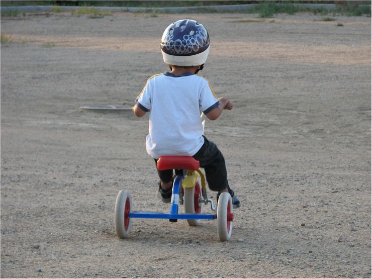 Picture Of Kids Tricycle