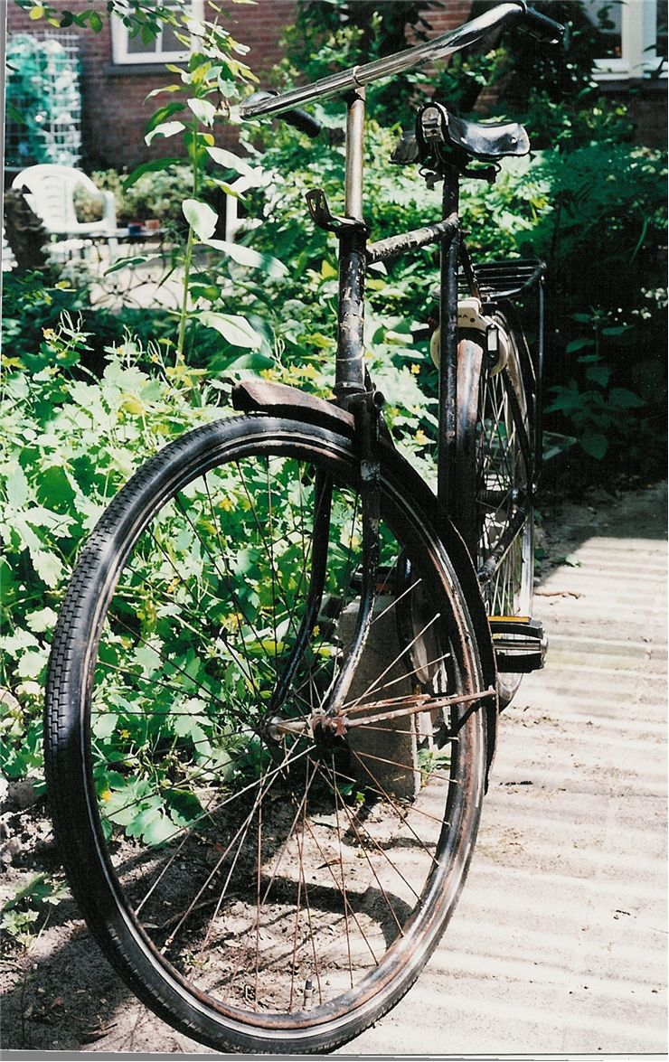 Picture Of Old Bicycle In Garden